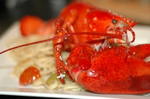 dinner-party-catering-lobster